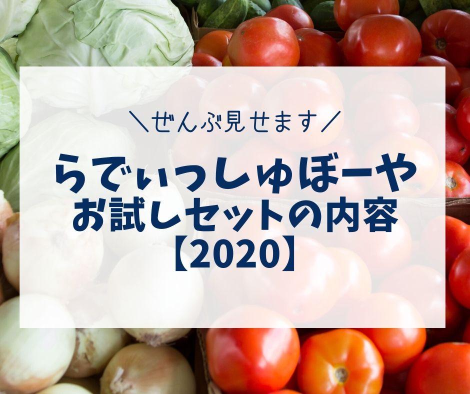 らでぃっしゅぼーや|お試しセットの内容【2020】管理栄養士ブログで解説