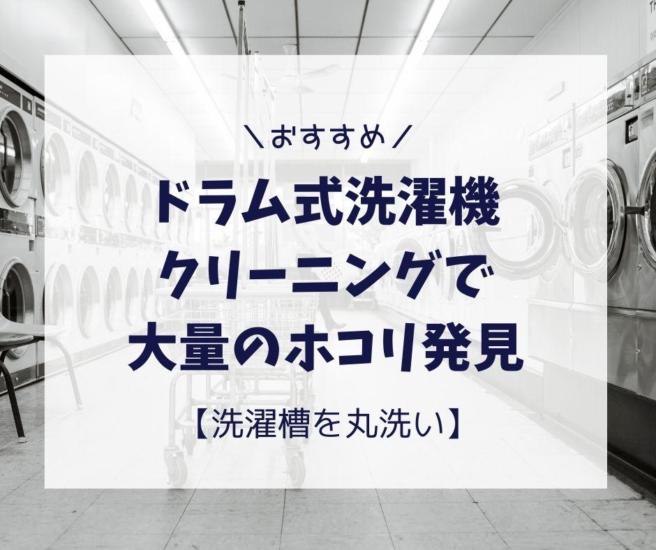 ドラム式洗濯機クリーニングで大量のホコリ発見!!【洗濯槽を丸洗い】